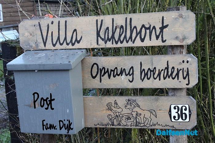 Villa Kakelbont haalt meer uit mensen - Foto: Annemieke