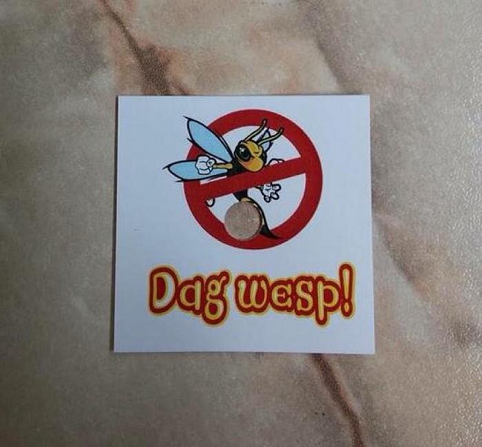"""Veel minder hinder met """"Dag Wesp""""! - Foto: eigen geleverde foto"""