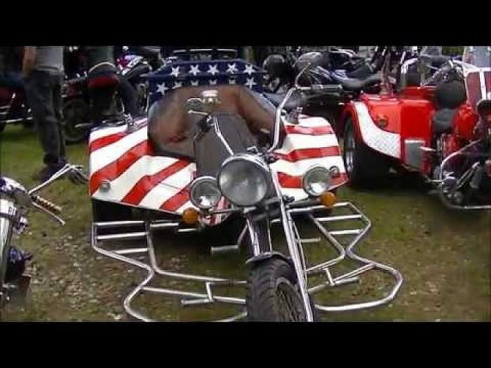 Amerikaanse dag Calluna (Video)