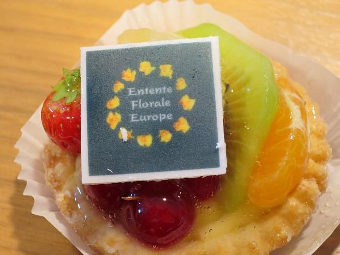 Dalfsen gaat voor Europees GOUD (2) - Foto: Wim