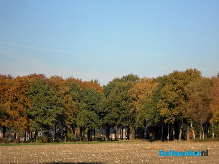 Herfst: weinig woorden, veel beelden