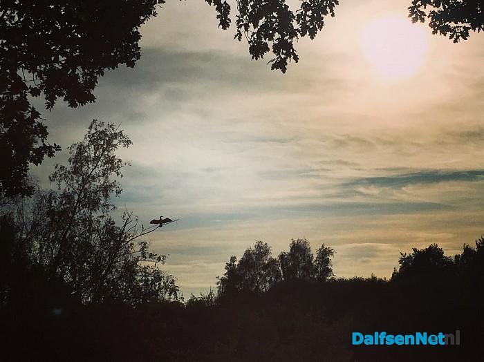 Foto's van Bellingeweer op zondag 30 oktober - Foto: Ingezonden foto