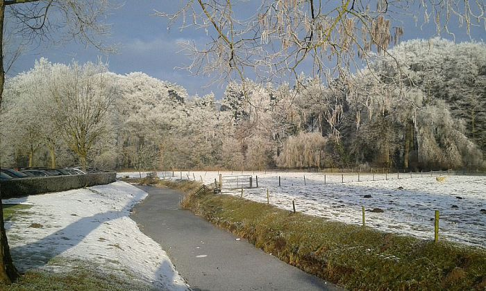 Winterwandeling op Zandhove - Foto: eigen geleverde foto
