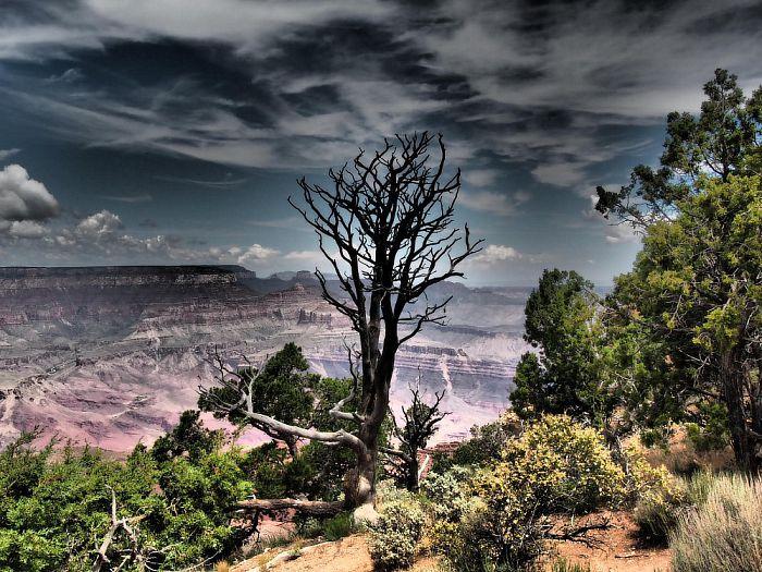 Vakantie foto's vanuit de USA - Foto: eigen geleverde foto