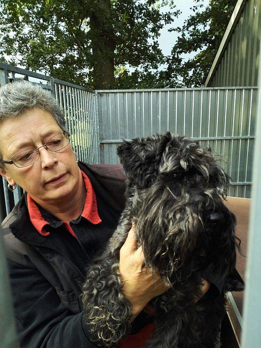 Loslopende hond die van de N35 is weer thuis - Foto: eigen geleverde foto
