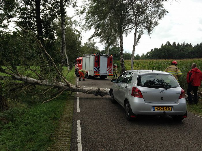 Auto met inzittenden onder vallende boom - Foto: Ingezonden foto