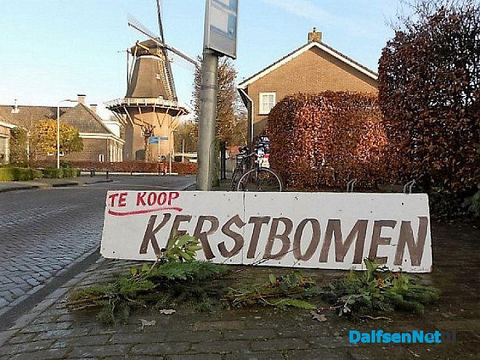 Hoonhorsters halen hun kerstboom weer bij Herman - Foto: Wim