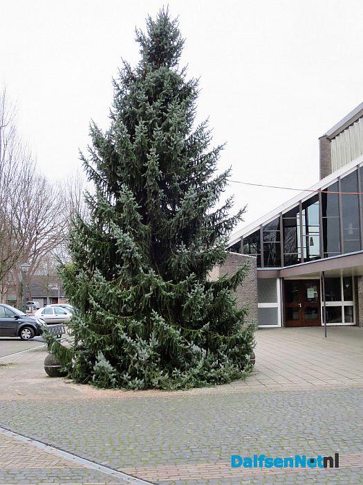 Prachtige Kerstboom staat inmiddels in Hoonhorst - Foto: Wim