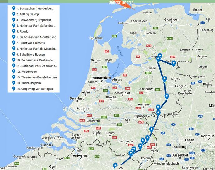 Overijsselse wolf (met zender) zit nu in België - Foto: eigen geleverde foto