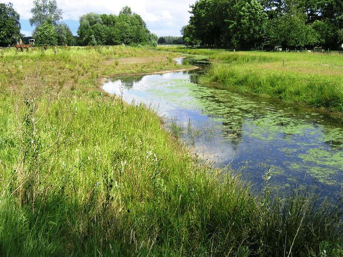 Ruimte voor water, ook omgeving IJhorst - Foto: eigen geleverde foto