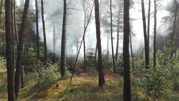 Branden Rechteren in onder de loep op TV - Foto: eigen geleverde foto