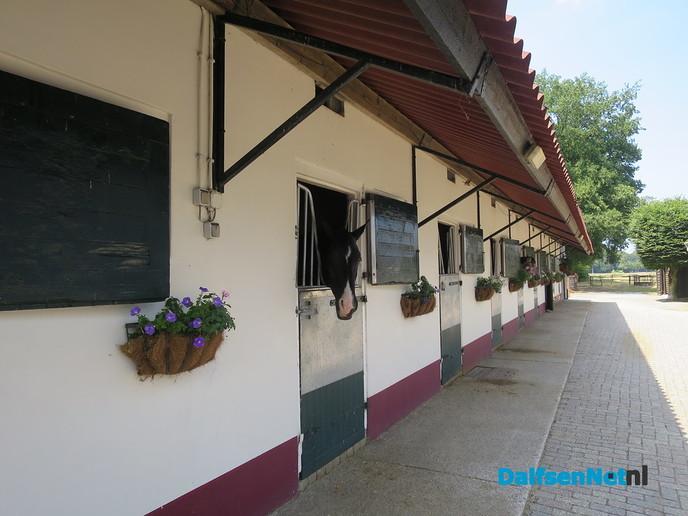 Het college Dalfsen op bezoek bij Stal Nanning - Foto: Wim