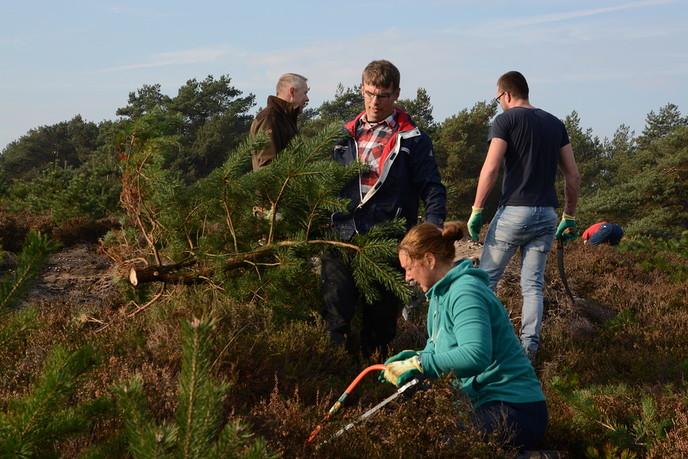 Plog- en zaaglocatie Natuurwerkdag Lemelerberg - Foto: eigen geleverde foto