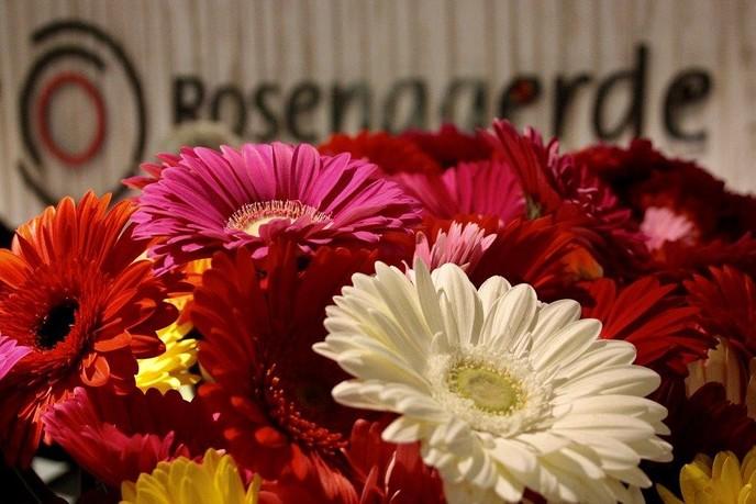 Rosengaerde zet mantelzorgers in de bloemetjes