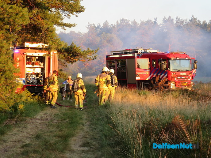 Veroordeling voor 5 bosbranden op Rechteren. (update) - Foto: Wim