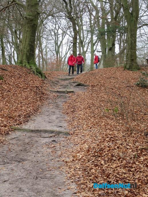 10e GreenShoes wandeling groot succes - Foto: Wim