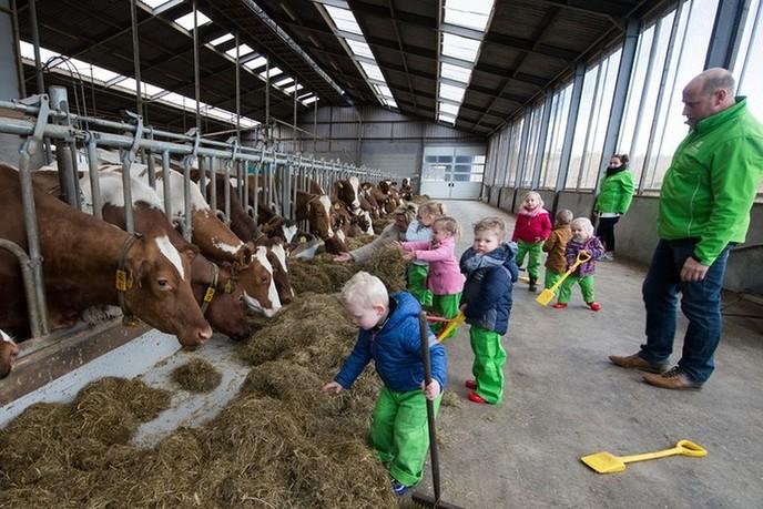 Boeren Bewust in Dalfsen - Foto: eigen geleverde foto