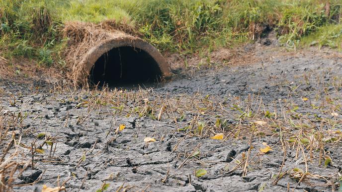 """Evaluatie droogte: """"Watervraag was extreem groot"""" - Foto: eigen geleverde foto"""