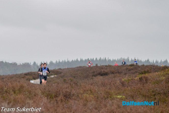 Sukerbiet Trailrun  op de Lemelerberg - Foto: Ingezonden foto
