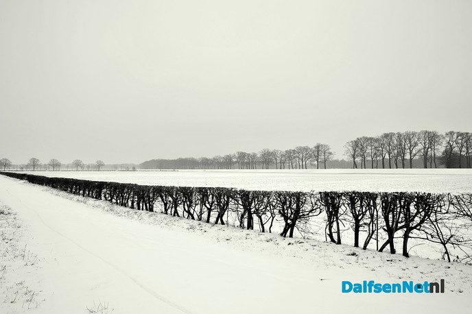 Prachtige winterbeelden van Ben Jonkman - Foto: Ben Jonkman