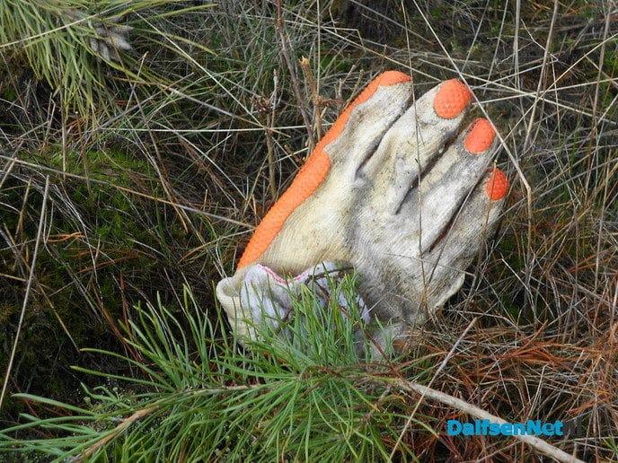 Met de buren het bos in voor natuuronderhoud