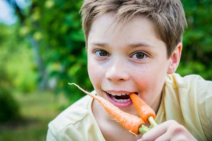 Gratis groentezaad voor basisscholen en BSO's - Foto: eigen geleverde foto