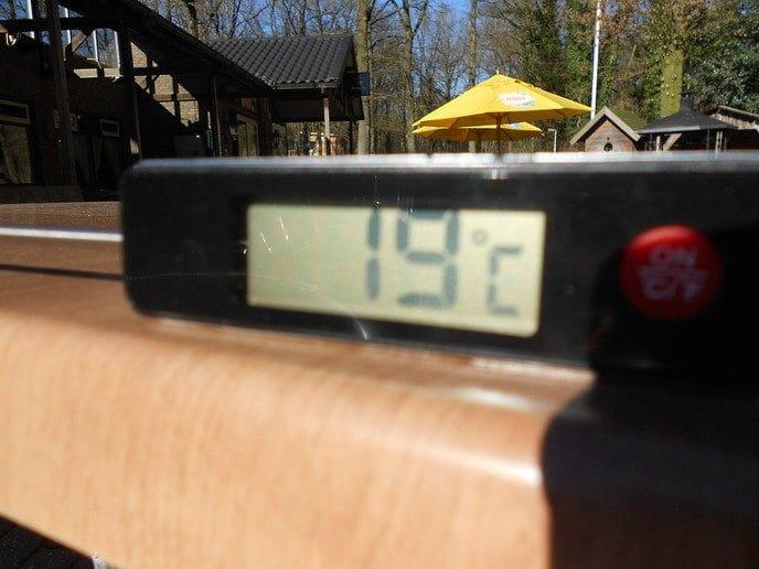 Daar in het bos is het altijd een paar graden warmer - Foto: eigen geleverde foto