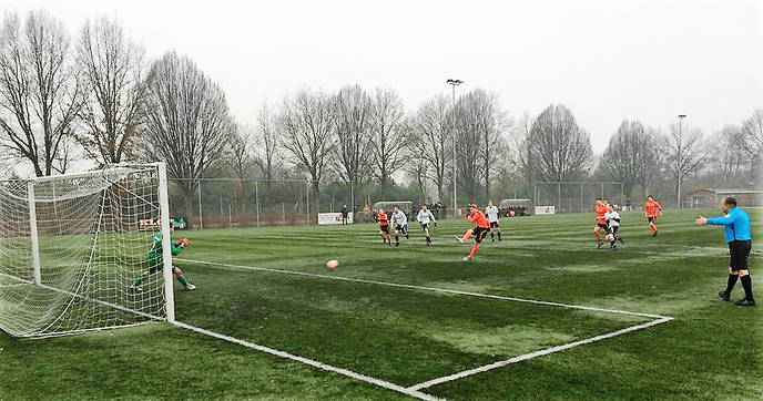 Fantastische teamprestatie S.V. Nieuwleusen - Foto: eigen geleverde foto