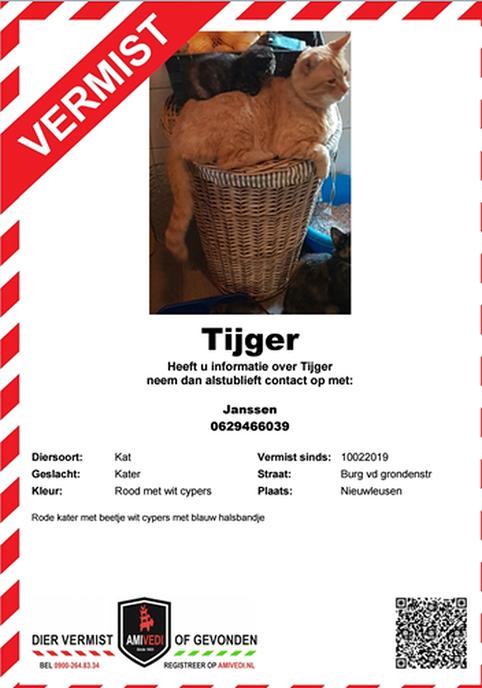 Tijger vermist - Foto: eigen geleverde foto