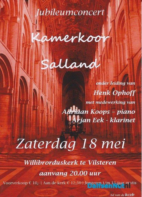 Jubileumconcert Kamerkoor Salland in Vilsteren - Foto: Ingezonden foto