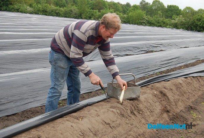 Open dag bij tuinderij Ernie van der Kolk - Foto: Ingezonden foto