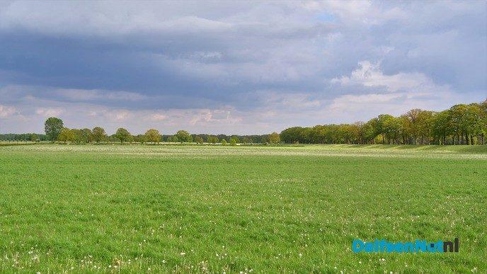 Volop voorjaar in en rond Dalfsen - Foto: Johan Bokma
