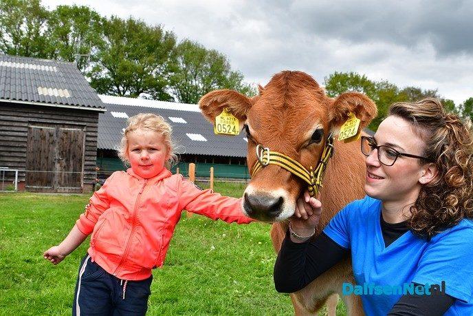 Veel bezoekers tijdens de eerste open Boerderijdag - Foto: Johan Bokma