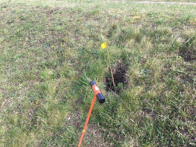 Gravende honden maken dijken kapot - Foto: eigen geleverde foto