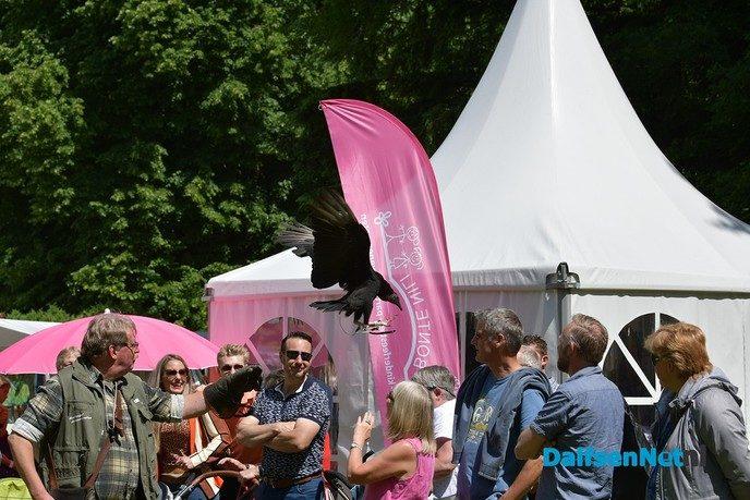 Organisatie kijkt terug op een geslaagde Pinksterfair - Foto: Johan Bokma