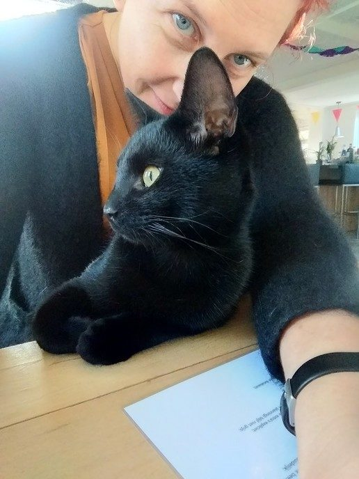 Zwarte kat vermist - Foto: eigen geleverde foto