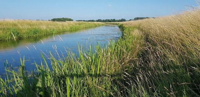 Update van het waterschap over de droogte - Foto: eigen geleverde foto