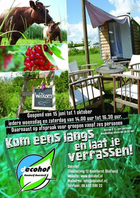 Echte komkommertijd op de decohof in Hoonhorst - Foto: eigen geleverde foto