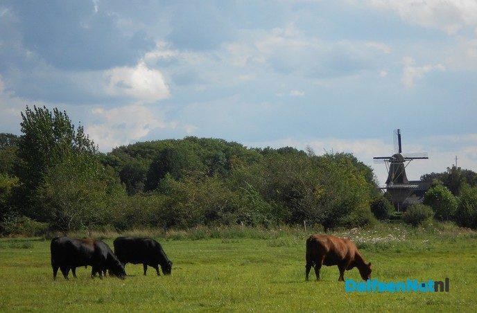 Rond de Hoonhorst