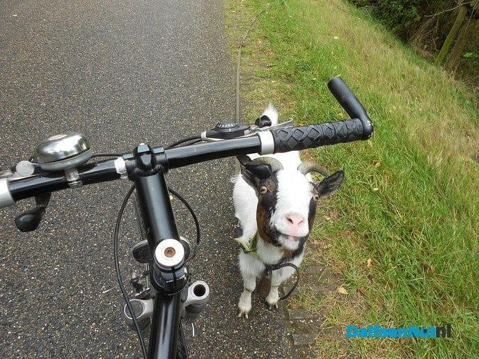 Wat heb ik nou aan mijn fiets hangen: een sik?
