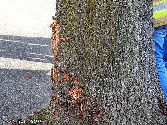 Auto tegen een boom parallelweg N377.
