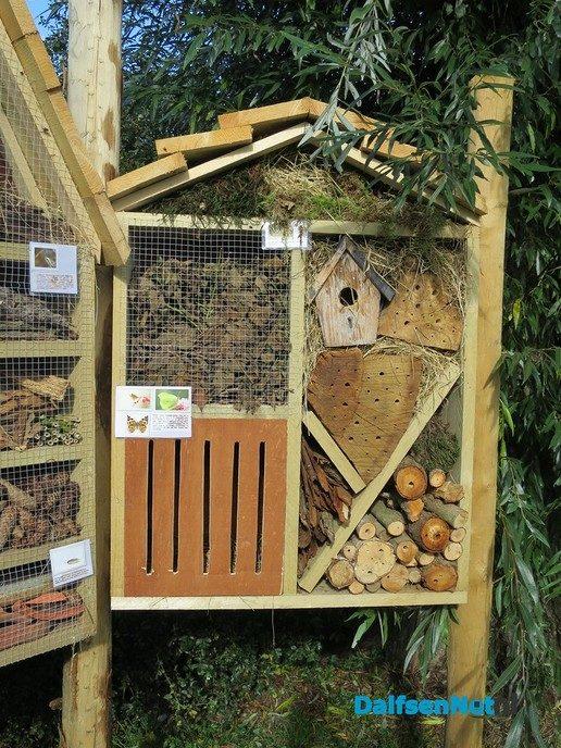 Ook Hoonhorst heeft een prachtig insectenhotel - Foto: Wim