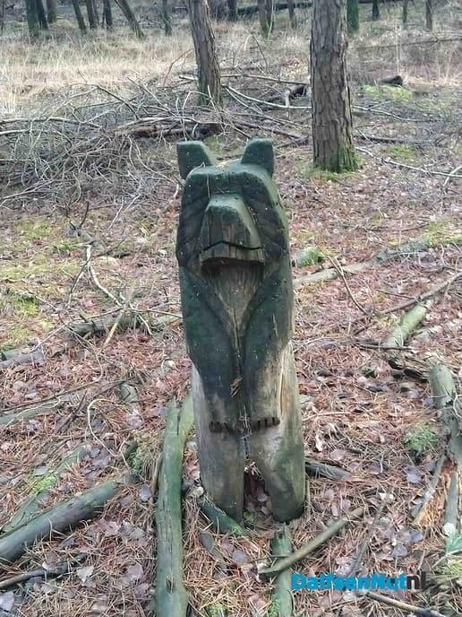 Wolven en … - Foto: Ingezonden foto