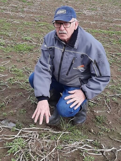 Eerste kievitsei van Overijssel in Dalmsholte gevonden - Foto: Ingezonden foto