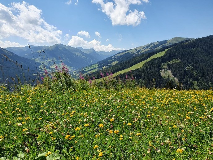 Vakantiegroet Saalbach - Foto: eigen geleverde foto