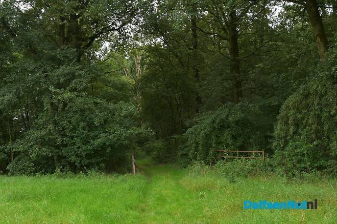 Struinpad Hessum in beeld - Foto: Johan Bokma