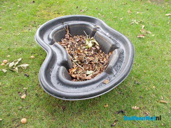 Als eekhoorns bomen kunnen planten kan ik het ook