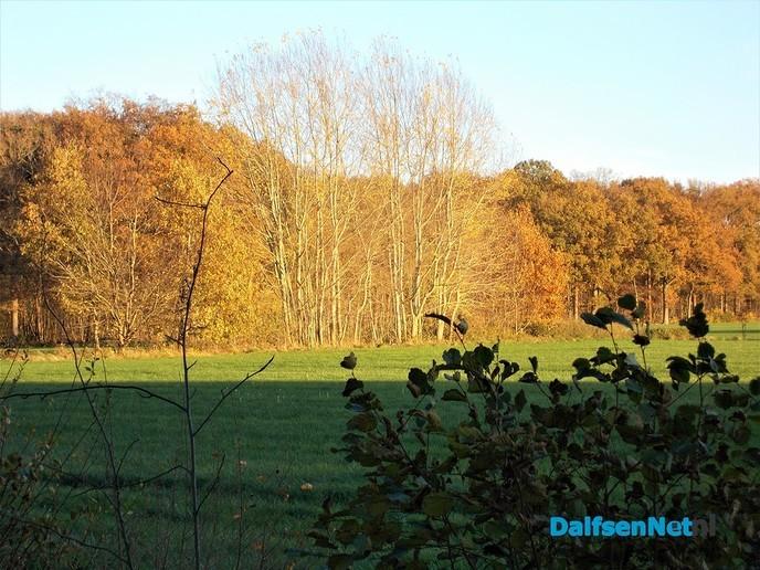 Herfst en zon, een prachtige combinatie