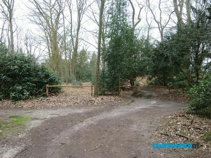 Groot onderhoud Landgoed Hoonhorst - Foto: Wim