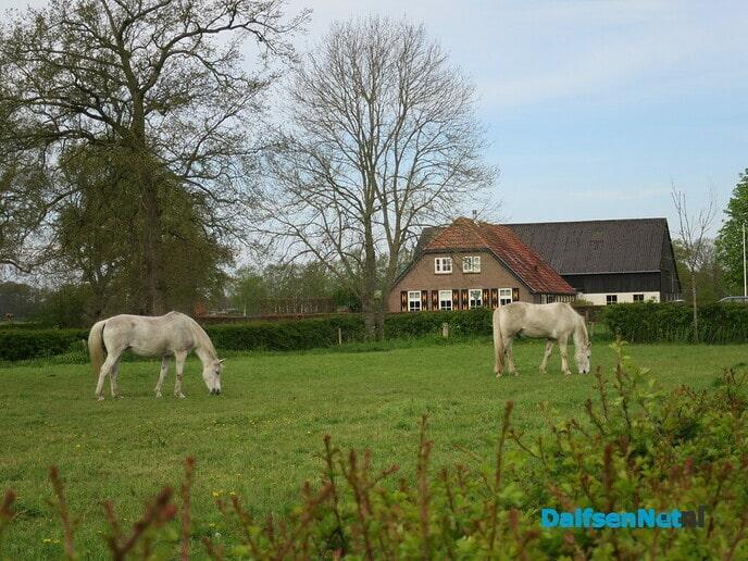 Nog een prachtig historisch wandelgebied Den Alerdinck - Foto: Wim